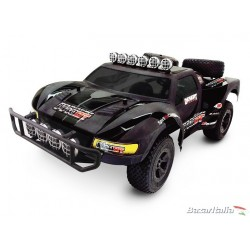 Automodello elettrico Carisma  M40DT Brushless Version Ready Set - Water Proof Electronics Off Road M40 series Scale 1/10